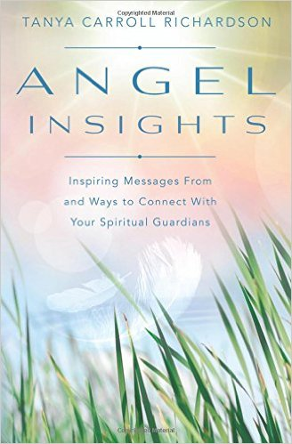 Book Cover: Angel Insights
