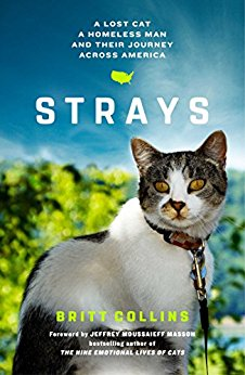 Book Cover: Strays