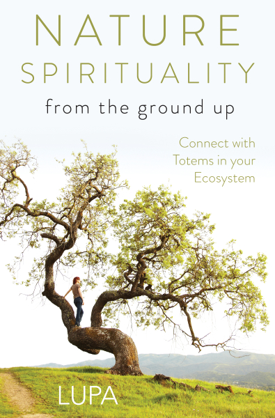 Book Cover: Nature Spirituality from the Ground Up