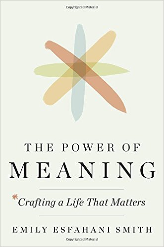Book Cover: The Power of Meaning