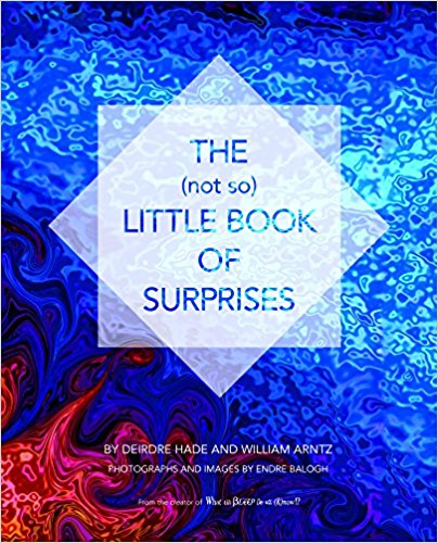Book Cover: The (not so) Little Book of Surprises