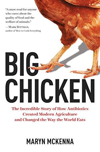 Book Cover: Big Chicken