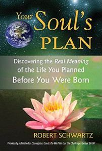 Book Cover: Your Soul's Plan