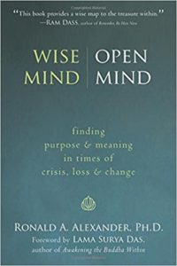 Book Cover: Wise Mind, Open Mind