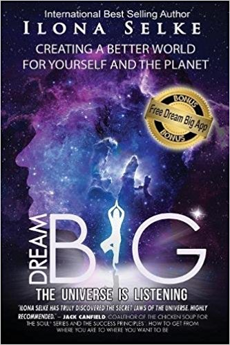 Book Cover: Dream Big the Universe Is Listening