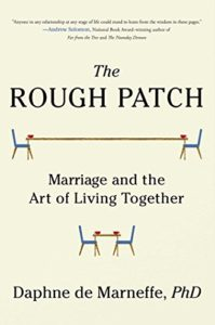 Book Cover: The Rough Patch
