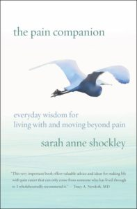 Book Cover: The Pain Companion