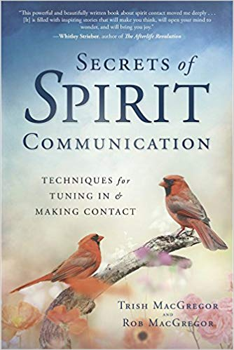 Book Cover: Secrets of Spirit Communication