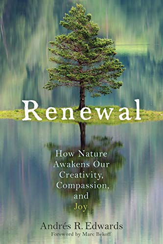 Book Cover: Renewal