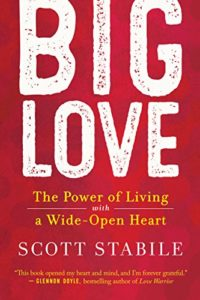 Book Cover: Big Love