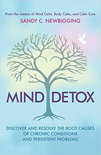 Book Cover: Mind Detox