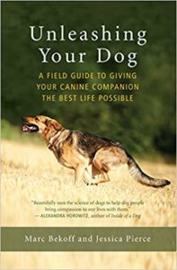 Book Cover: Unleashing Your Dog