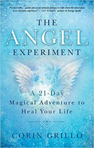 Book Cover: The Angel Experiment