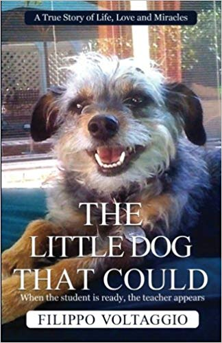 Book Cover: The Little Dog That Could