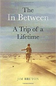 Book Cover: The In Between