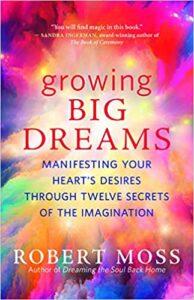 Book Cover: Growing Big Dreams