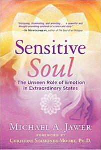 Book Cover: Sensitive Soul