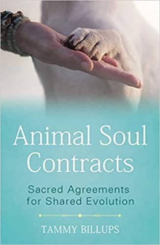 Book Cover: Animal Soul Contracts